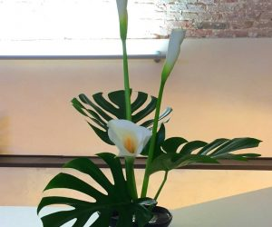 ikebana-margherita-ferrari-2