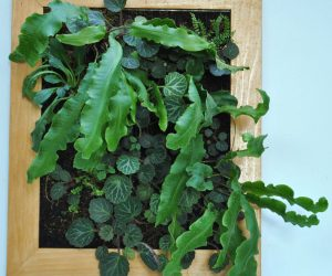vertical-gardening-lab-4