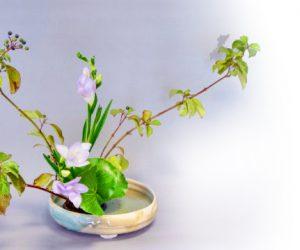 ikebana-FullSizeRender-27-12-18-01-28-1