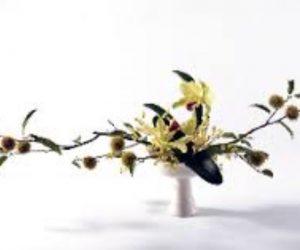 ikebana-FullSizeRender-27-12-18-01-28-2