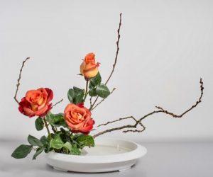 ikebana-FullSizeRender-27-12-18-01-28-3